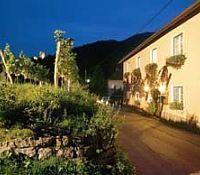Bauernhof Weingut Donabaum Farmhouse Spitz an der Donau - dream vacation