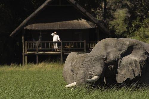 Belmond Safaris-3