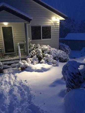 Photo: Snowgums in Katoomba