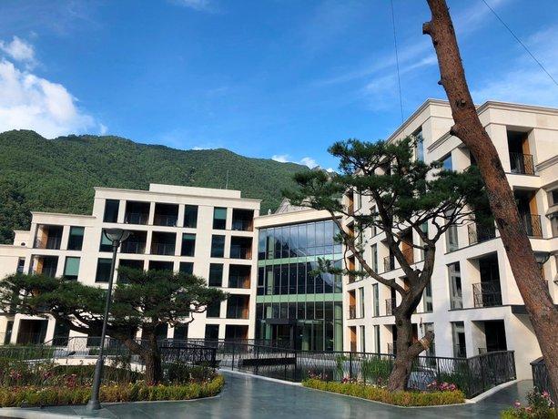 Pine Forest Jeongseon Alpine Resort