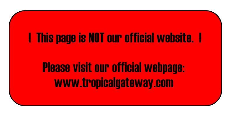 Photo: Zed Tropical Gateway Motor Inn