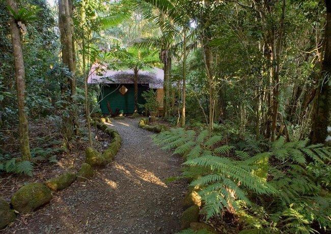 Photo: Springbrook Lyrebird Retreat