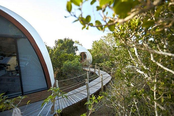 Wild Coast Tented Lodge - All Inclusive-47