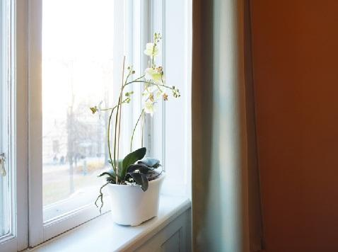 Sundsvall City Hostel - dream vacation