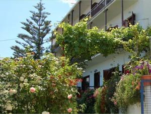Hotel Erato Chorefton - dream vacation