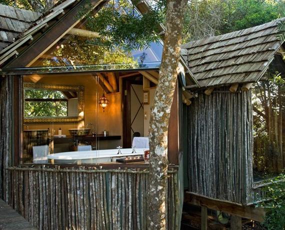 The Phantom Forest Eco-Reserve - dream vacation
