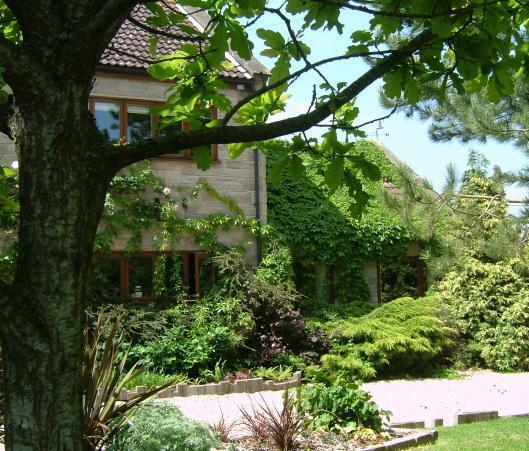 Tor Farm Guest House Cheddar - dream vacation