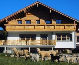 Alpenchalet-Gosau - dream vacation