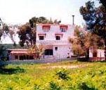 Villa Nikos Koukounaries - dream vacation