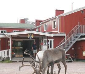 STF Grovelsjon Fjallstation - dream vacation