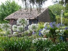 Дом для отпуска Villa Iolanda Giarre