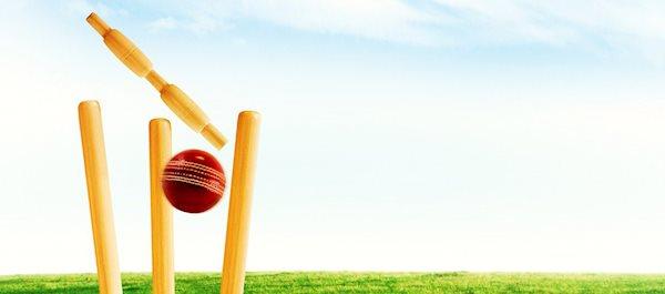 Mikkelberg-Kunst-und-Cricket Center