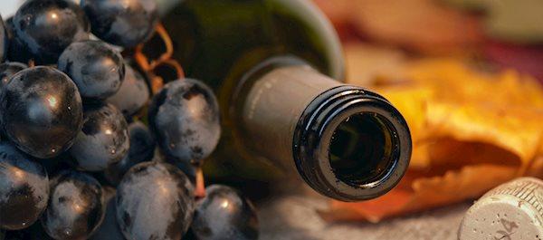 Mittelrhein vinregion