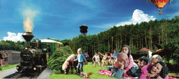 Zsuzsi Forest Railway