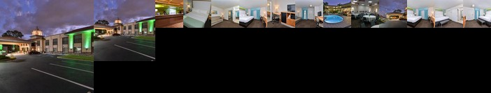 Holiday Inn Hotel & Suites Tampa North