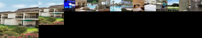 Saddlebrook Golf Resort & Spa Tampa North Wesley Chapel