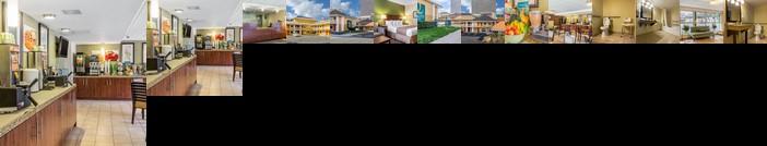 Quality Inn Flamingo
