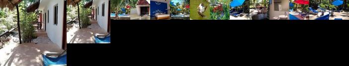 Casa de las Tortugas I Tour Akumal