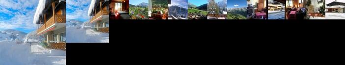 Chalet-Hotel du Borderan