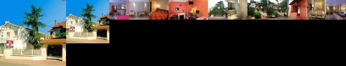 Hotel Le Lyon Bron