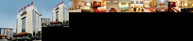 Nanyang Wangfu Hotel