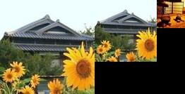 Noka Minshuku Himawari Awajishima
