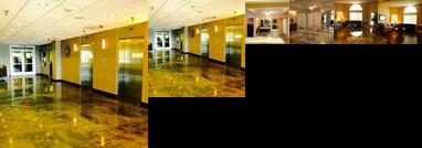 888 Convention Center 1 Bedroom 2 Bath Condos