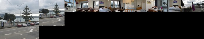 The Bay House Wellington