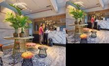 Robusta Suites by mushROOM