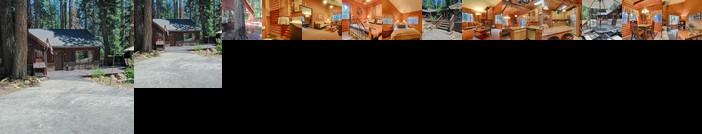 The Bernstein Bear Cabin - 2 Br Cabin
