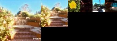 Gilligan's Island - Temecula Vacation Home Spa Waterfalls Putting Green Bon Fire Pit
