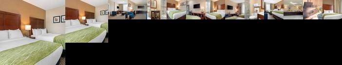 Comfort Inn & Suites Jamaica New York City