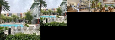 Spacious Westshore 2 Bed / 2 Bath w/Lush Terrace Views